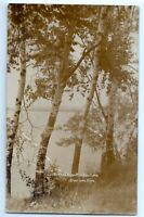 Royce's Resort on Bear Lake, Michigan; photo postcard; Kalkaska County