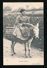 France Paysanne Basquaise animal donkey transport c1920/30s? PPC