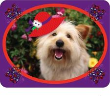 2X PURPLE T SHIRT W/ A CUTE RED HAT DOG READY FOR HATTING FOR LADIES OF SOCIETY