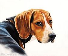 Fox Hunting Hound Gun Dog Hamiltonstovare Canvas Art Poster Print Painting Sport