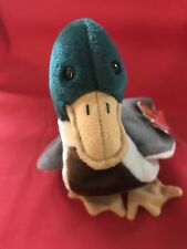 TY Beanie Babies JAKE, the baby mallard duck; beautiful colors & sweet face!!!