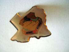 PINS DESERT STORM 1991 GUERRE DU GOLF GULF IRAN IRAK