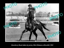 OLD LARGE HORSE RACING PHOTO OF STRAWBERRY ROAD AT ROSEHILL IN 1983 MICK DITTMAN
