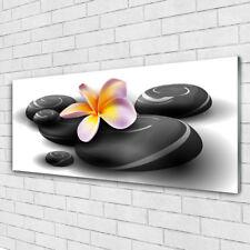 Glasbilder Wandbild Druck auf Glas 125x50 Blumen Steine Natur