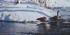 Terry Isaac Winter Thaw Canadian Geese SN Print with Cert 31 x 15.75