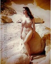 Semi nude Diane Webber model female art photograph picture woman girl print 22X4