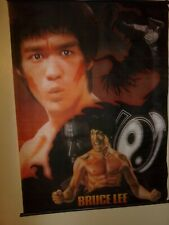 Bruce Lee Vintage Silk Fabric Martial Arts Large Poster   a1