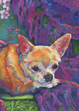 KMSchmidt ACEO Ltd Ed Collectible Art Card CHIHUAHUA cottage dog Boho colors