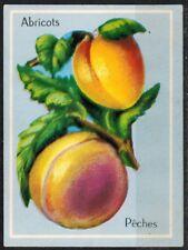 Carte Chromo - Image  Abricots,Pêches - Fruits - Réf.177