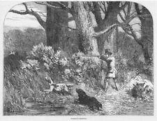 Woodcock Shooting, Victorian Hunting Scene - Antique Print 1850