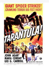 Tarantula Movie Poster Featuring John Agar, Mara Corday, & Leo Carroll 11 X 17