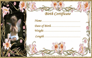 """FAIRY & LILIES BIRTH CERTIFICATE/CERTIFICATES REBORN FAKE BABY approx 7x5"""""""