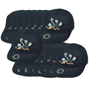 MiLB Reading Fighting Phils Minor League Twill Youth Set Of 15 Baseball Hat Cap