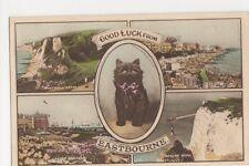 Good Luck from Eastbourne, Black Cat Postcard, B357