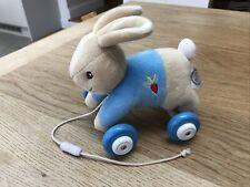 Peter Rabbit Pull Along Baby Toy Rainbow Designs 0+ Beatrix Potter Nursery