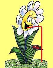 Riserva di acqua per piante anche in vostra assenza - Aquacontrol