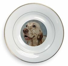 English Setter Dog Gold Rim Plate in Gift Box Christmas Present, AD-ES3PL