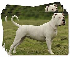 American Staffordshire Bull Terrier Dog Picture Placemats in Gift Box, AD-SBT9P