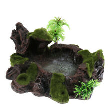 Plant Moss Decor Reptile Feeding Bowl Tortoise Gecko  Water Dish
