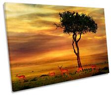 African Sunset paisaje DE LONA pared arte Foto impresión única