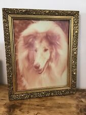 Large Vintage Photo Print Of Award Winning Rough Collie Dog Lassie Dog Sepia