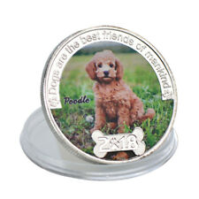 WR Poodle Dog Colored Silver Commemorative Coin Birthday Gifts For Girls