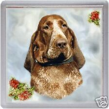 Bracco Italiano Coaster No 1 Design by Starprint