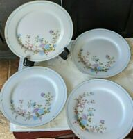 Set of 4 Salad / Dessert Plates in China Garden Pattern