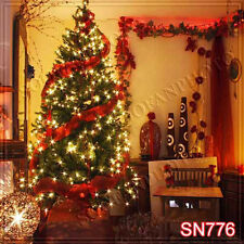 Christmas 10'x10' Computer-painted Scenic Photo Background Backdrop SN776B881