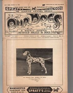 1939 Our Dogs March 10 Dalmatian Bubbles of Birch