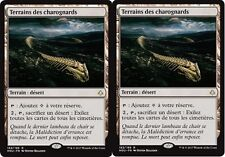 MTG Magic - Âge de la Destruction - Terrains des charognards X2 - Rare  VF