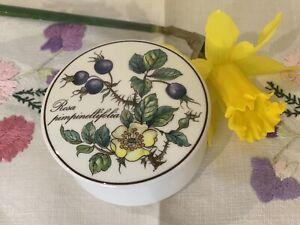 Villeroy & Boch Botanica Lidded Trinket Box ~ Rosa Pimpinellifolia