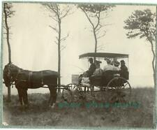 5 albumen photos: variety of HORSE AND CARRIAGE in use, ca 1900,  Massachusetts