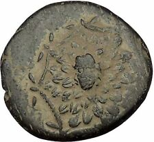 Sinope in Paphlagonia time of Mithradates VI the Great Gorgon Greek Coin i53702
