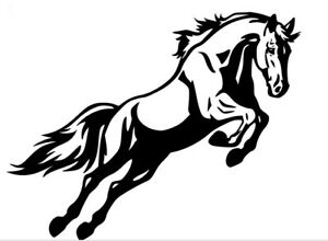 Car, wall sticker decal - WHITE  290mm horse float stickers x4