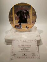 "Wedgwood Playful Puppies Collectors Plate"" Can I Come In?"", Boxed"