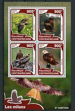 Central African Republic 2016 MNH Kites 4v M/S Birds of Prey Black Brahminy Kite