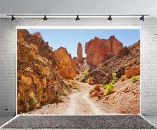 Screen Photo Studio Desert Photography Photo Backdrop Background 5x3ft