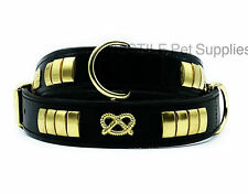 LEATHER DOG COLLAR STAFFY STUDDED WITH MINOR MANUFACTURING DEFECTS ON STUDS