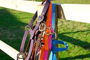 Rhinegold  Headcollar  Adjustable  Shetland, Pony, Cob, Full, XFull All Colours