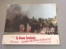 PHOTO D'EXPLOITATION LOBBY CARDS - LA BRUNE BRULANTE (PAUL NEWMAN ...)