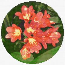 "Orange / Coral Clivia - 10"" Round/Circular Cross Stitch Flower Kit, 14 Count"