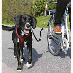 Biker Set Big Dog Bicycle Lead short Guide Spacer
