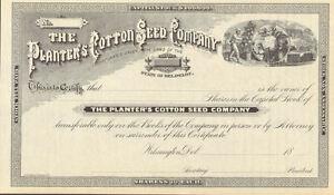 Planter's Cotton Seed Company > 18__ Wilmington Delaware stock certificate share