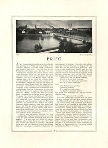 Brieg - Brzeg XL Rekame 1925 Präsentation Selbstdarstellung der Stadt Polen