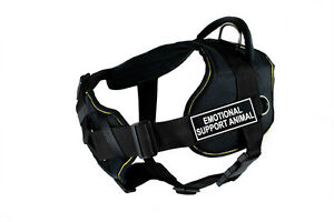Dean & Tyler DT Fun with Chest Pad Support, Dog Harness with Removable Patches