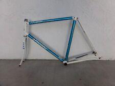 Raleigh team technium aluminum frameset 59cm