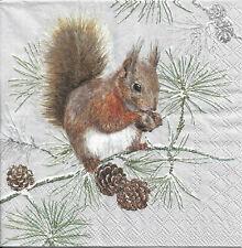Ambiente 3 Épaisseur serviettes en Papier Écureuil hiver Fête de Noël Déjeuner