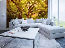 Photo Wallpaper Forest in Spring GIANT WALL DECOR PAPER POSTER BEDROOM Free Glue