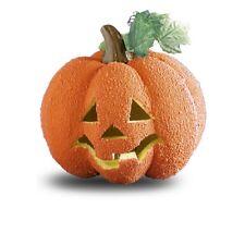 Zucca Rugosa da cm 23 con luce interna decorazione halloween